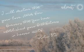 ADVENT | You Have Established Your Faithfulness