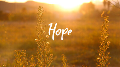 Psalm 131 | HOPE