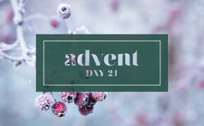 ADVENT | Day 24