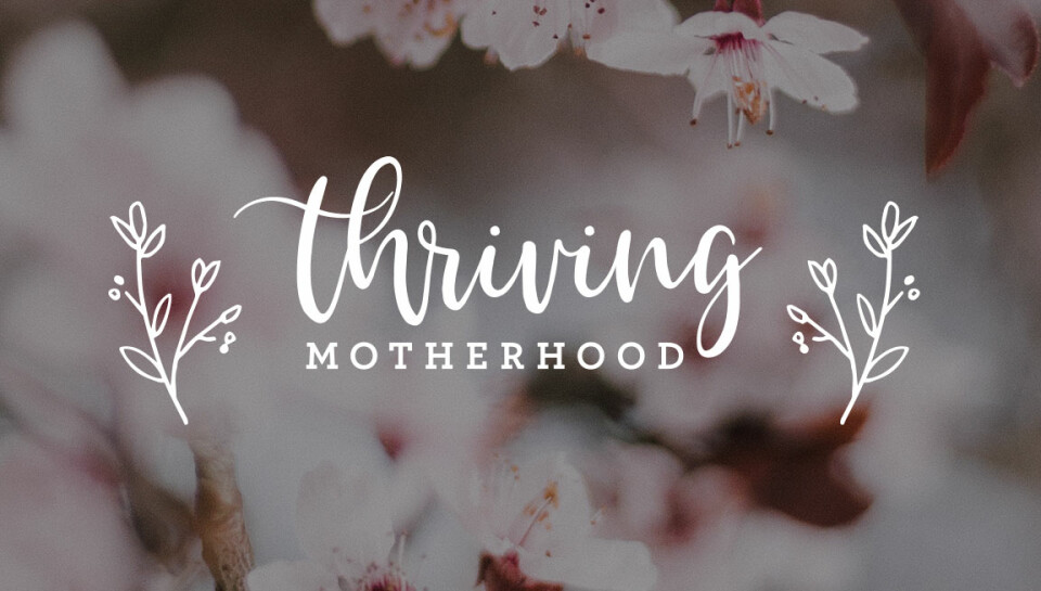 Thriving Motherhood | Preschool Moms Group
