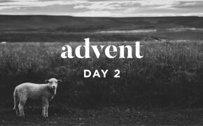ADVENT 2019   The Lamb of God
