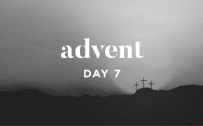 ADVENT 2019 | He Bore the Sins of Many
