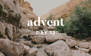 ADVENT 2019 | Living Water