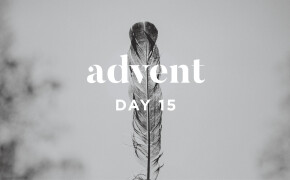 ADVENT 2019 | God Has Remembered His Oath