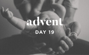 ADVENT 2019 | He Will Save His People