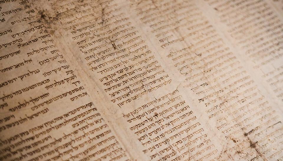 ELECTIVE | Understanding Your Ancient Text