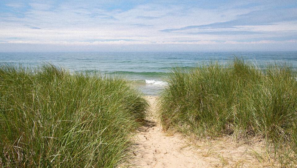 THE WALK | Lake Michigan Beach Day